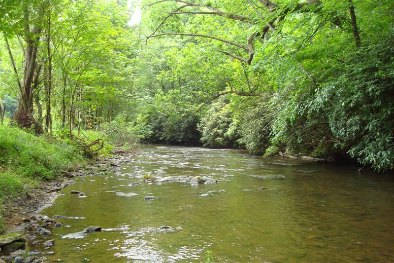 North Carolina Mountain River Property Welcome To Woodie